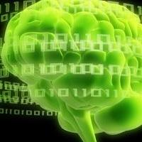 Jan vom Brocke, Fred Davis, René Riedl und Pierre-Majorique Léger organisieren 3. Gmunden Retreat on NeuroIS