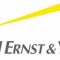 Studierende der Universität Liechtenstein bei Ernst & Young in Zürich
