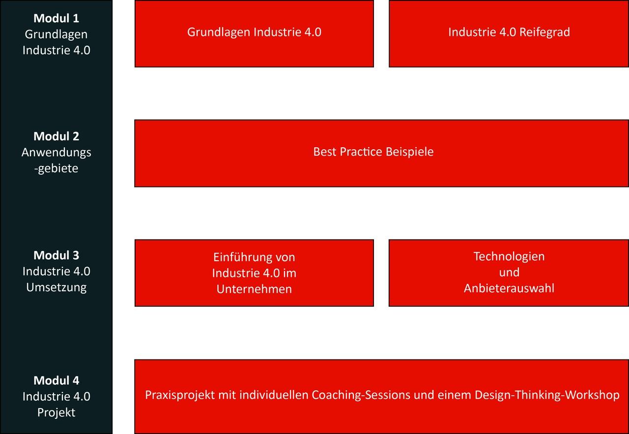 Grafik_Uebersicht Curriculum_neu.jpg